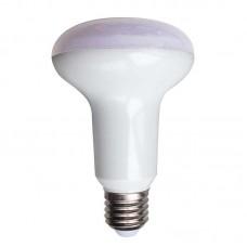 ΛΑΜΠΑ LED 10W R80 3000K