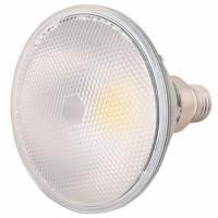 ΛΑΜΠΤΗΡΑΣ  LED PAR38 LED 16W COB GREEN IP65