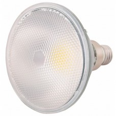 ΛΑΜΠΤΗΡΑΣ  LED PAR38 LED 16W COB GREEN IP65